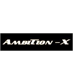 Ambition-X